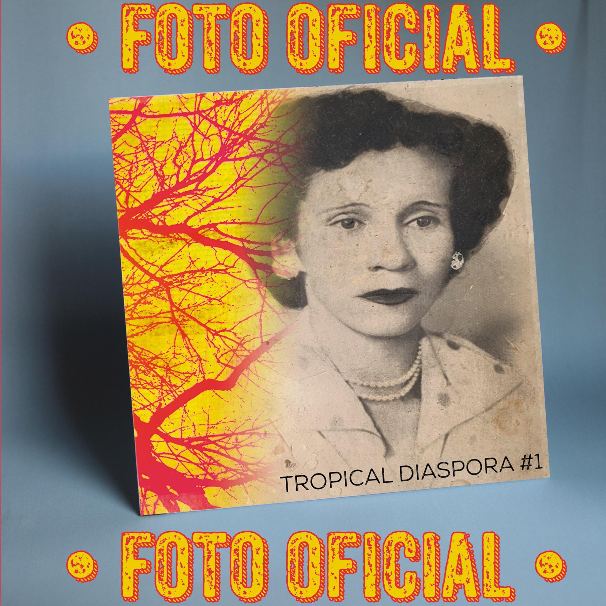 TDR010 FOTO OFICIAL V1